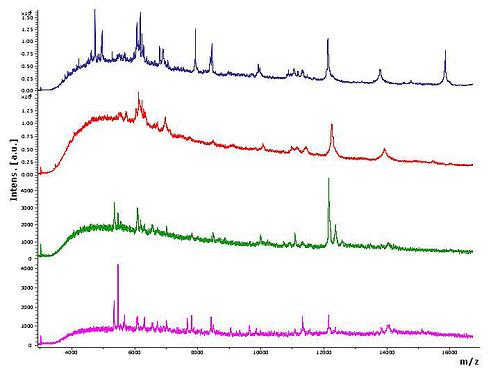 featured image Qual o melhor método para análises de alergênicos?