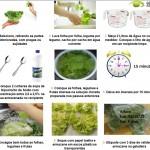 Desinfecção de frutas, legumes e hortaliças