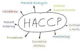 falhas no HACCP