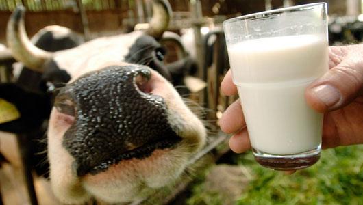 leite_cru