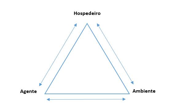 featured image A verificação no plano HACCP