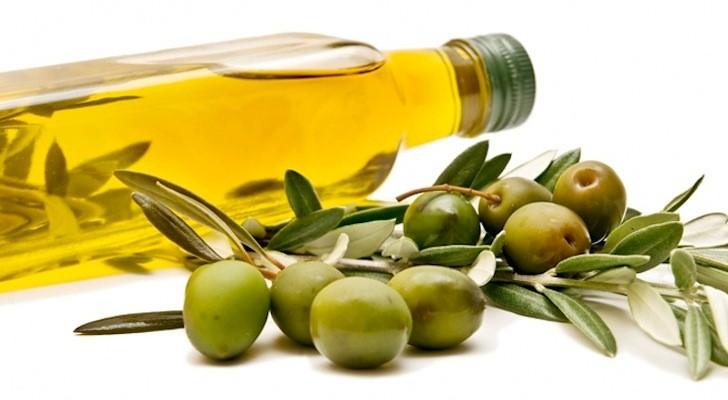 featured image Entenda como acontecem as fraudes e adulterações de azeite de oliva