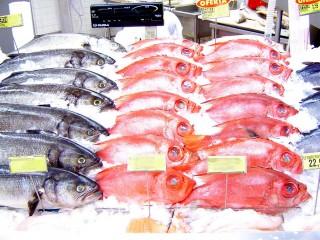 pescado_rastreabilidade