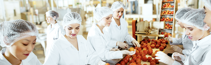 featured image O Coaching nas Indústrias de Alimentos | Mudança Cultural