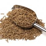 Alimentos de origem animal: afinal, onde começa a Segurança de Alimentos nessa cadeia?