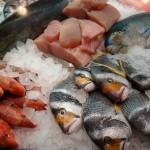 Perigos microbiológicos do Pescado
