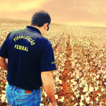 Informações sobre a carreira do Fiscal Federal Agropecuário (FFA)