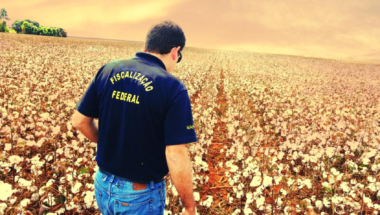 featured image Informações sobre a carreira do Fiscal Federal Agropecuário (FFA)