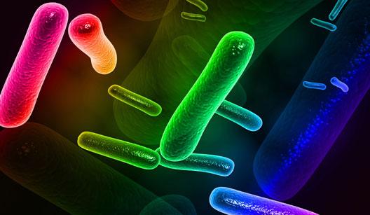 featured image Avaliação de Riscos Microbiológicos – Palestra do IV Simpósio 3M Food Safety