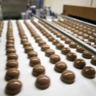 Trays of chocolate biscuits on a production line in a factory