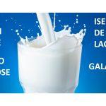 Consulta pública sobre lactose definirá teores para lactose e galactose