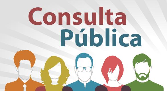 Resultado de imagem para consulta pública