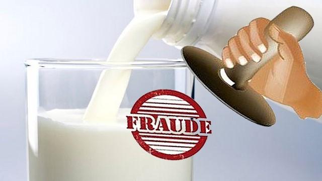 featured image Fraude do leite: aspectos a serem considerados