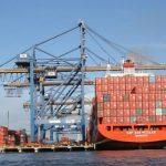 Entenda por que produtores e exportadores devem consultar os Limites Máximos de Resíduo (LMRs) antes de exportar!