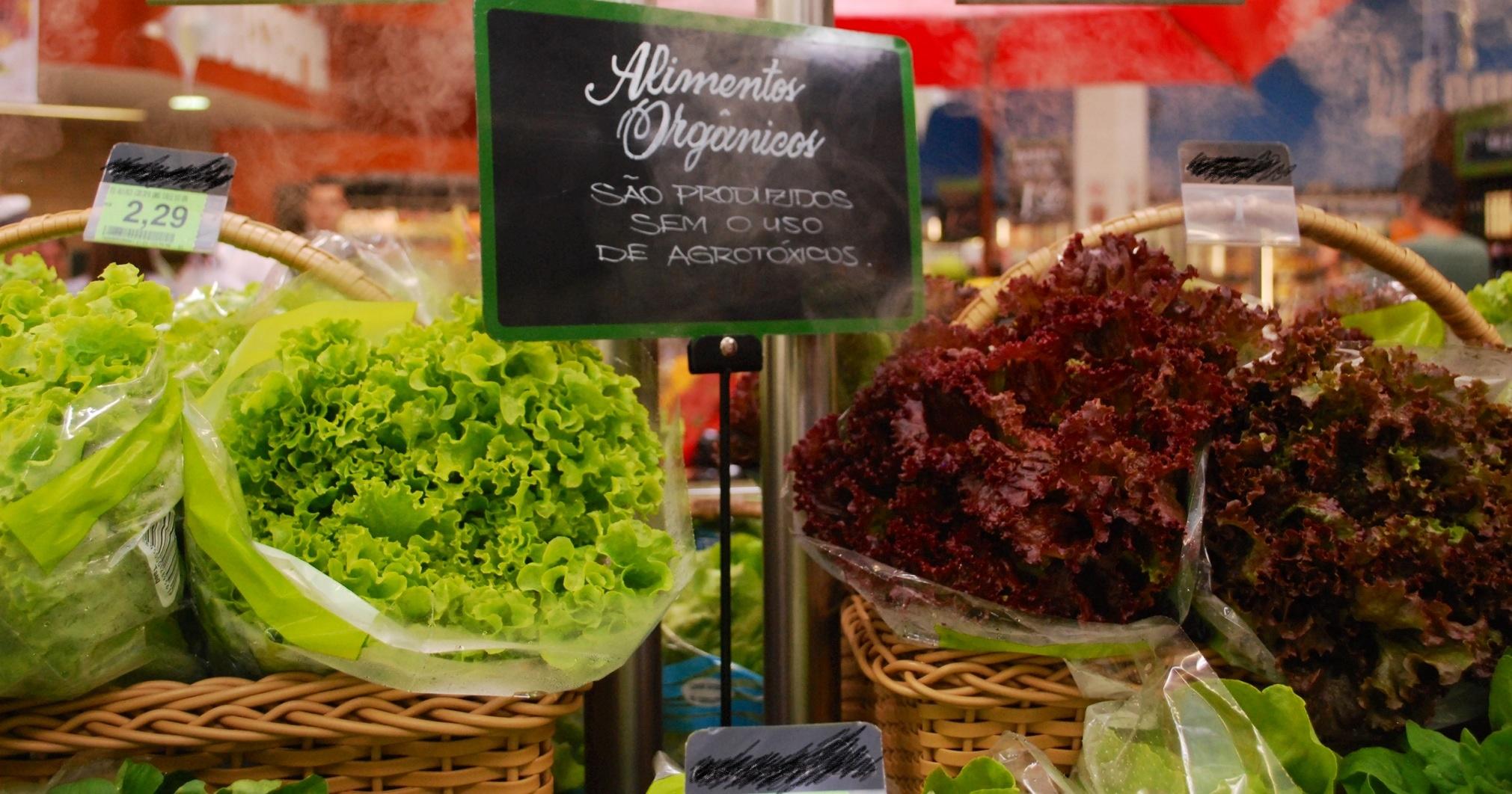 featured image Por que tem aumentado o consumo de alimentos orgânicos?