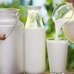Aflatoxina M1: Pesquisa mostra riscos no leite in natura