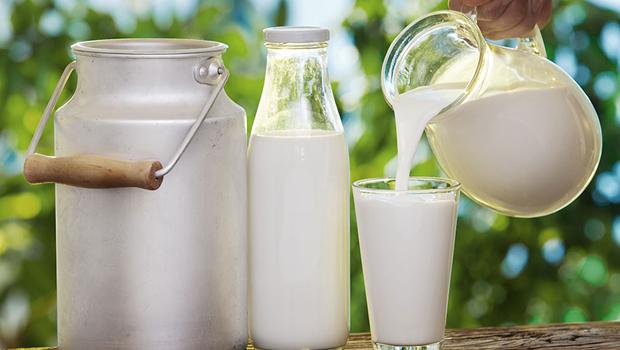 featured image Aflatoxina M1: Pesquisa mostra riscos no leite in natura