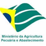 MAPA divulga informações sobre o monitoramento de pesticidas e contaminantes em vegetais