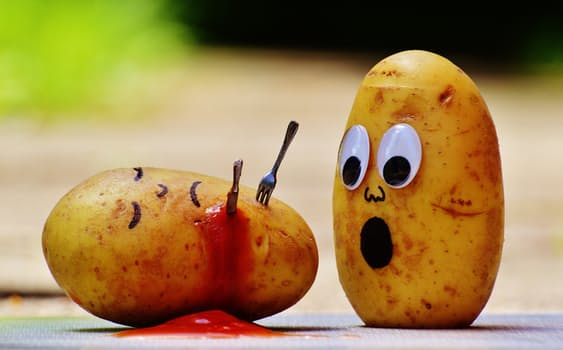 """featured image Por que os alimentos """"estragam"""" e qual o perigo de consumi-los"""