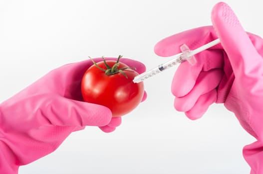 featured image Auditorias piloto da FSSC sobre fraude em alimentos e seus resultados