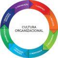 featured image Gestão da cultura organizacional e a segurança dos alimentos