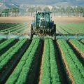 featured image O que muda com a aprovação do projeto de lei n° 6.299/2002 para revisão da lei de agrotóxicos?