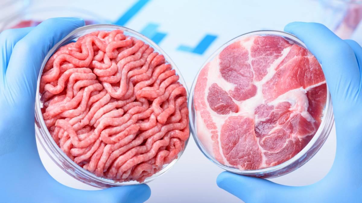 MAPA lança consulta pública para regulamento técnico de carne moída – Food Safety Brazil