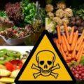 featured image China lança padrão preliminar para limites máximos de resíduos de pesticidas em alimentos
