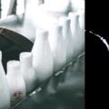 featured image Avaliação das vulnerabilidades, segundo o programa Food Fraud da U.S. Pharmacopeia